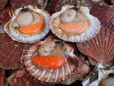Coquilles st jacques au beaujolais recettes a cuisiner - Cuisiner le corail des coquilles saint jacques ...